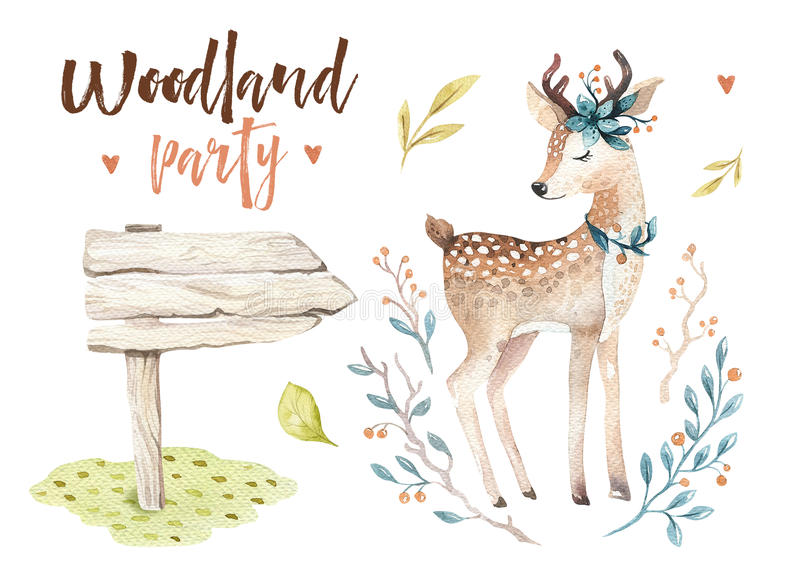 Cute baby deer animal nursery isolated illustration for children. Watercolor boho forest drawing, watercolour, image. Perfect for nursery posters, postcard vector illustration