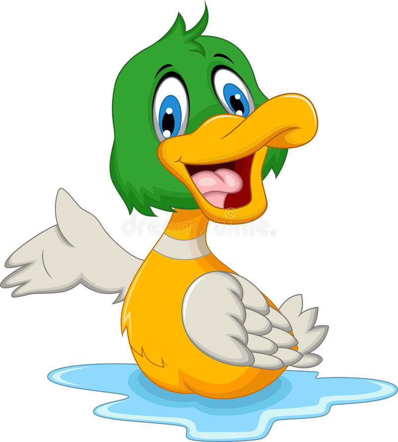 Cute baby duck cartoon posing vector illustration