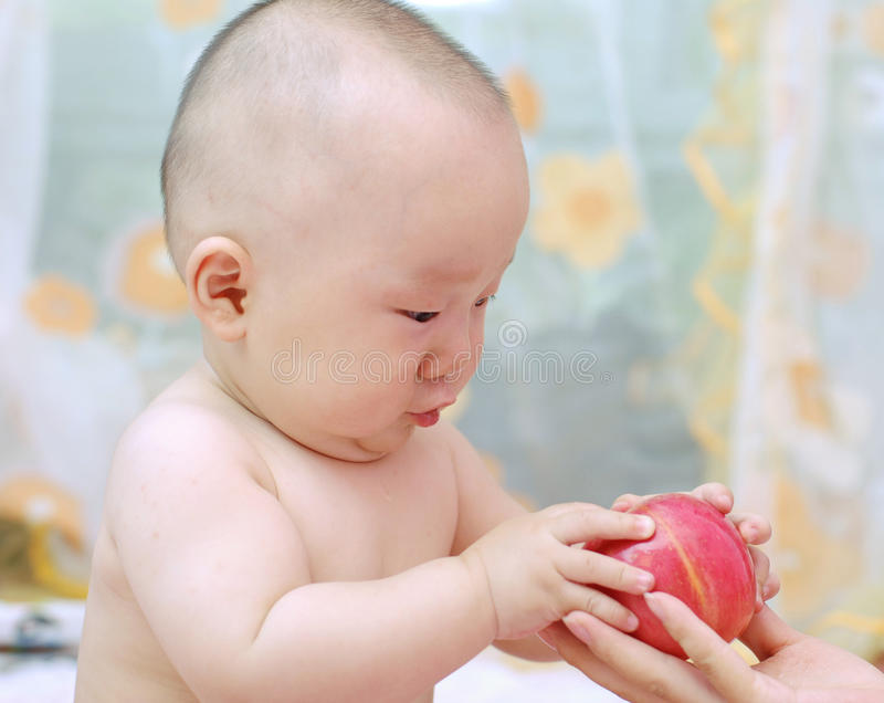 Cute Baby Eat Apple Royalty Free Stock Photo
