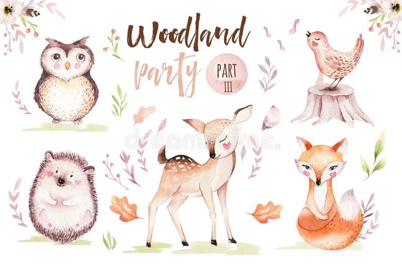 Cute baby fox, deer animal nursery bird and bear isolated illustration for children. Watercolor boho forest drawing. Cute baby fox, deer animal nursery rabbit stock illustration