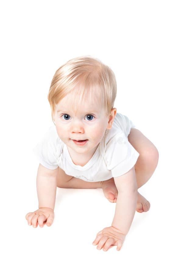 Cute baby girl crawls royalty free stock photography