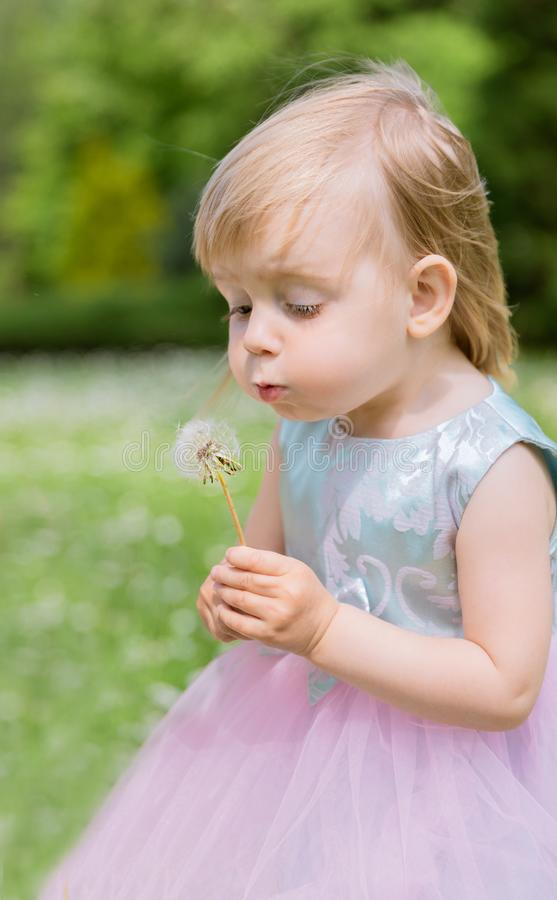 Cute Baby Girl with Dandelions in the Park. Summer Concept royalty free stock photo