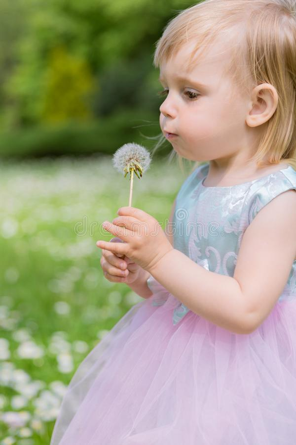 Cute Baby Girl with Dandelions in the Park. Summer Concept stock photo