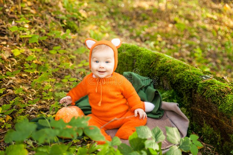 Cute baby girl dressed in fox costume. In autumn forest. Fall halloween kids session stock photos