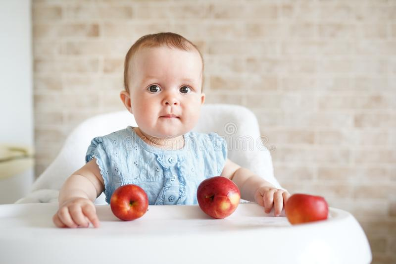 Cute baby girl eating apple in the kitchen. Little kid tasting solids at home. Healthy nutrition for kids. copy space royalty free stock photos