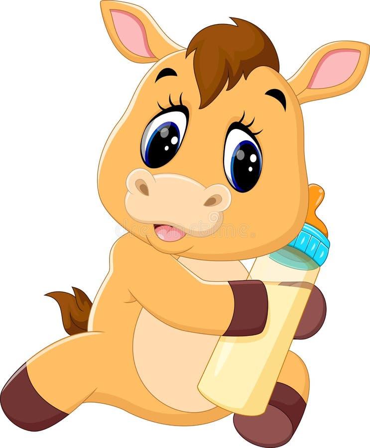 Cute baby horse cartoon. Illustration of Cute baby horse cartoon vector illustration