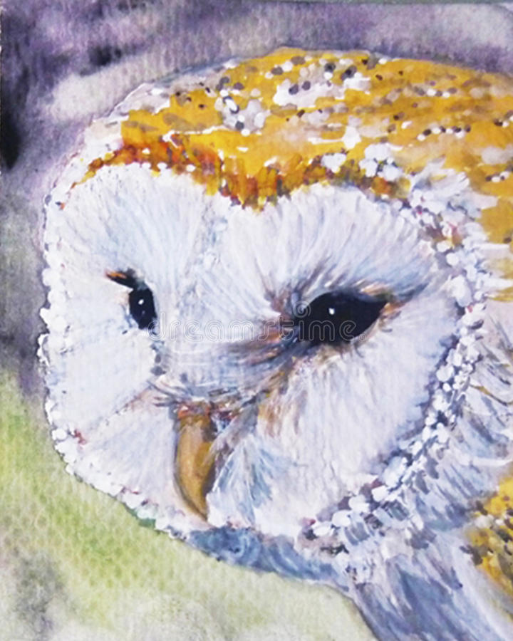 Cute Barn owl art. Birs watercolor barn owl face art royalty free illustration