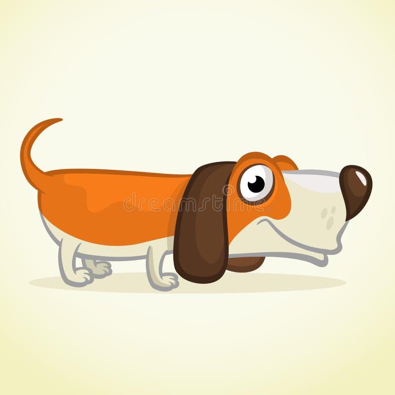 Cute Basset Hound dog cartoon. Vector illustration royalty free illustration