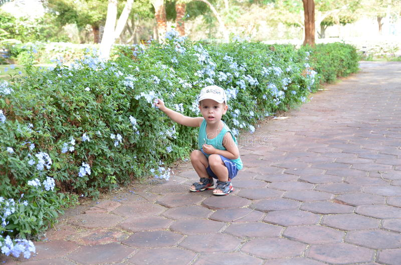 Cute beautiful baby kid little boys playing near a beautiful bush of flowers with a dollar bill in hand in a white cap royalty free stock photo