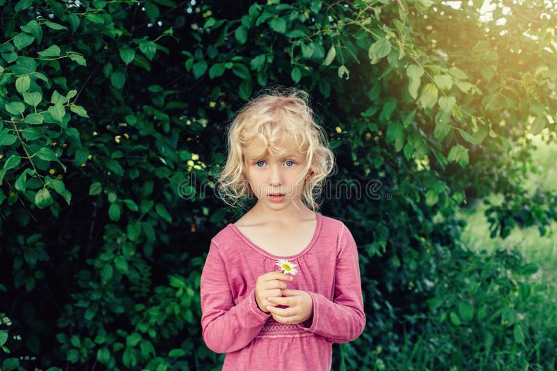cute beautiful blonde Caucasian girl in red pink dress holding white daisy flower in her hands. royalty free stock photography