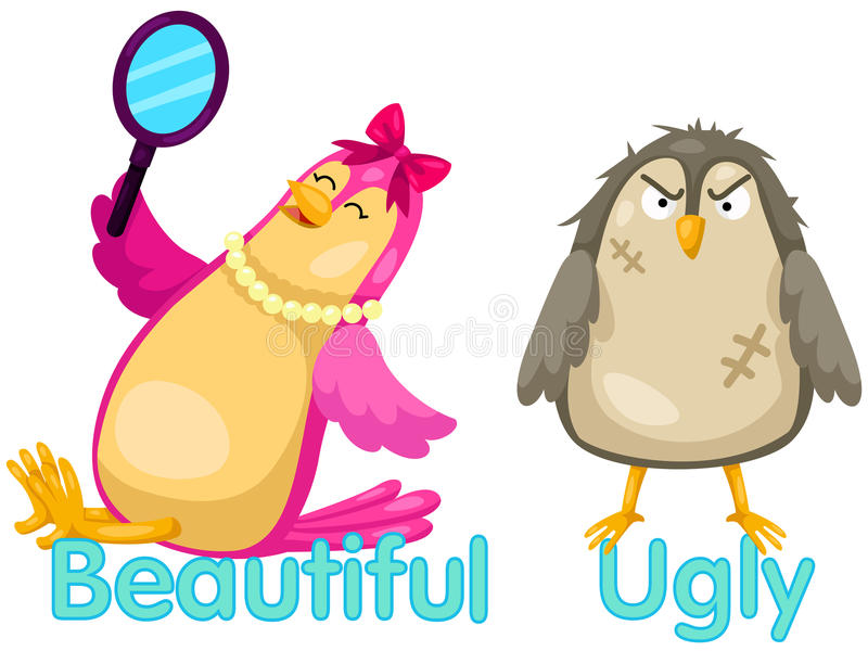 Cute birds with opposite words. Illustration of isolated cute birds with opposite words royalty free illustration