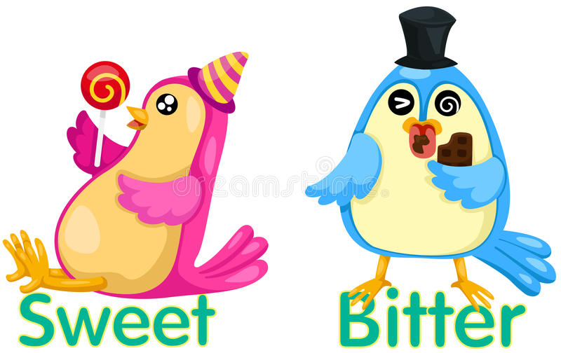 Cute birds with opposite words. Illustration of isolated cute birds with opposite words stock illustration