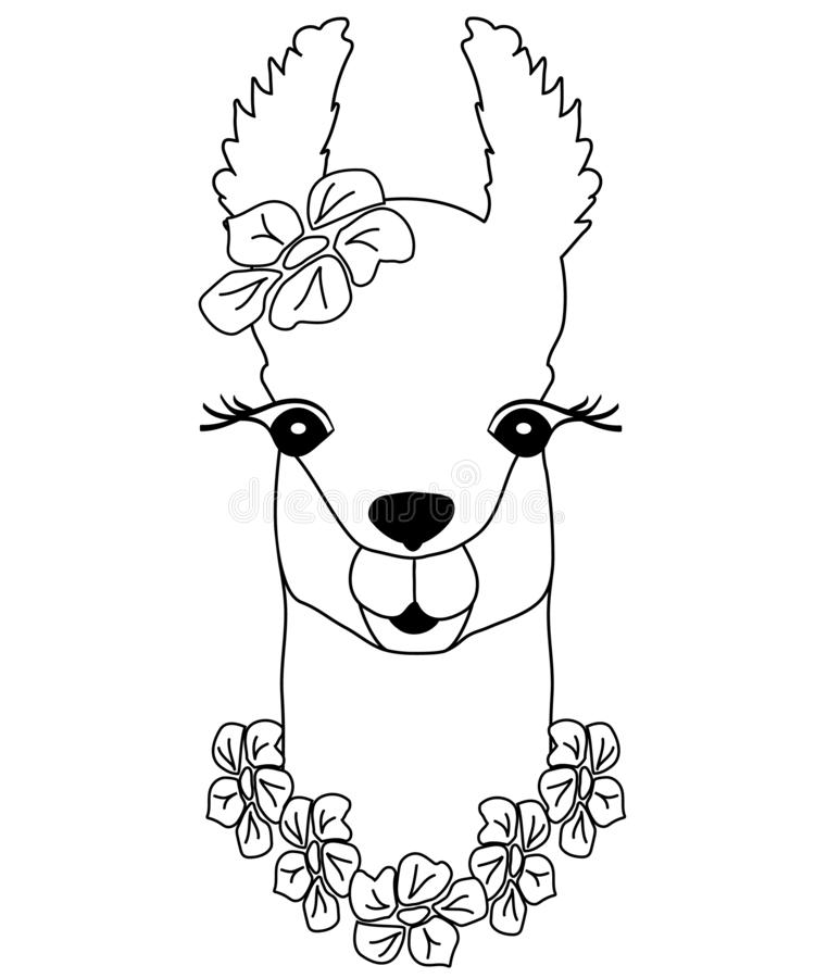 Cute black-white lama with flowers. Peruvian animal, llama for coloring, childish print for fabric, t-shirt, poster vector illustration