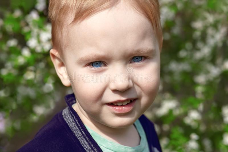 Cute blond baby boy with bright blue eyes smiles in the blossom park. Emotion of happiness, fun, joy. Outdoors, copy space, green and white spring background royalty free stock images