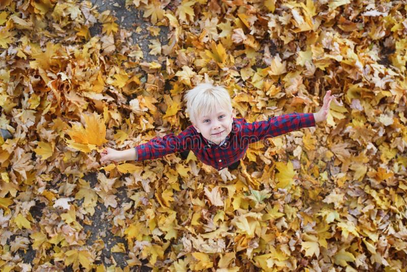 Cute blond boy stands in a autumn leaves and looks up. Top view. Autumn concept royalty free stock photos