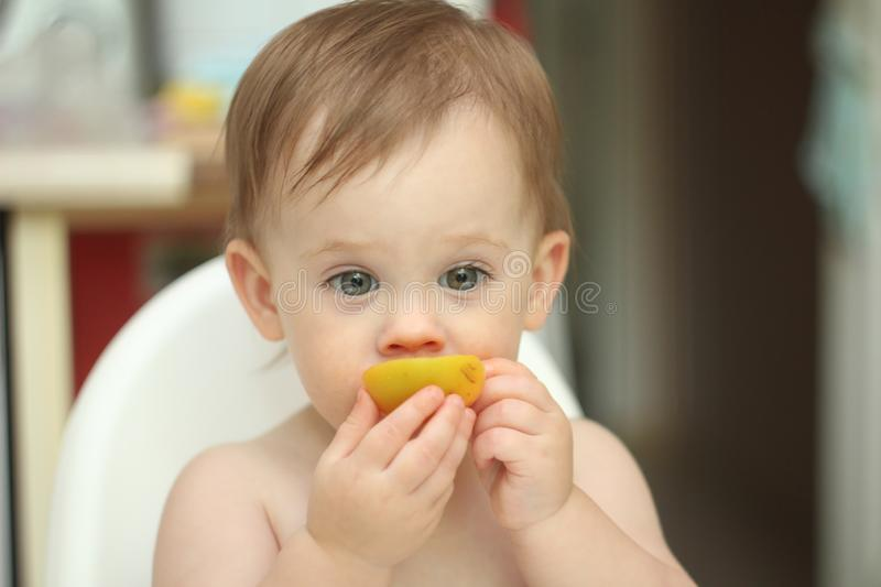 cute blond child sits in a children& x27;s chair at the kitchen and eat a juicy peach. Little girl with a piercing look stock photo