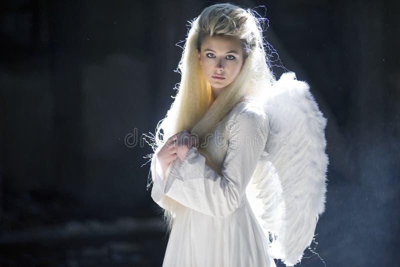 Cute blondie as an angel royalty free stock image