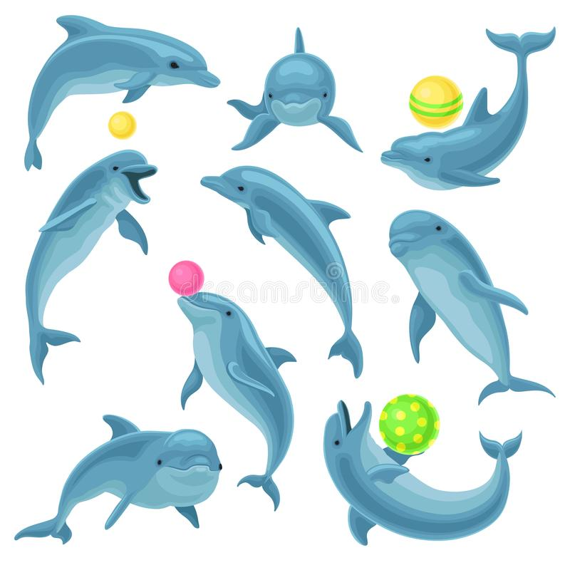 Free Cute Blue Dolphins Set, Dolphin Jumping And Performings Tricks With Ball For Entertainment Show Vector Illustration On A Stock Image - 120309141