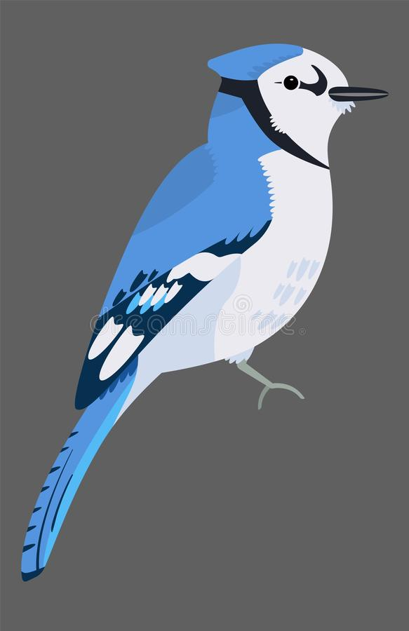 Cute Blue Jay bird icon. Sitting animal sign. royalty free stock images