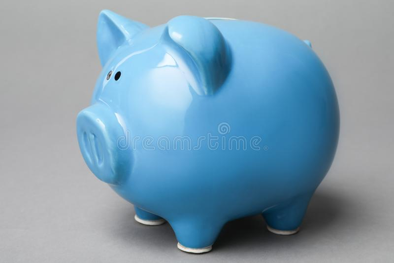 Cute blue piggy bank. On gray background royalty free stock photography