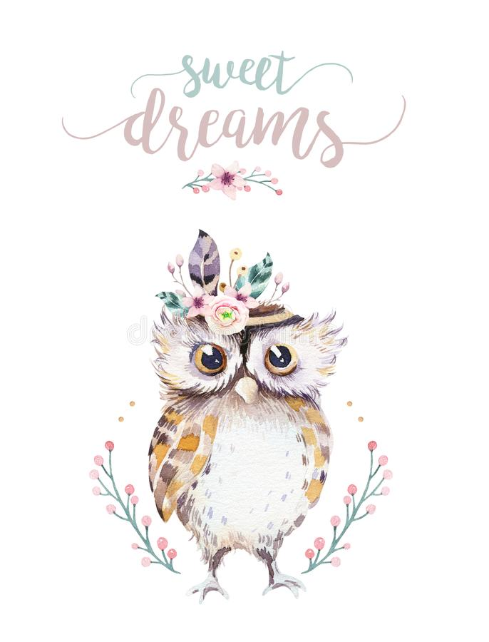 Cute bohemian baby owl animal for kindergarten, woodland nursery isolated decoration forest owls illustration for. Cute bohemian baby owl animals for stock illustration