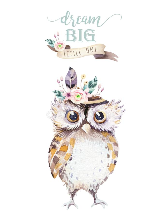Cute bohemian baby owl animal for kindergarten, woodland nursery isolated decoration forest owls illustration for. Cute bohemian baby owl animals for royalty free illustration