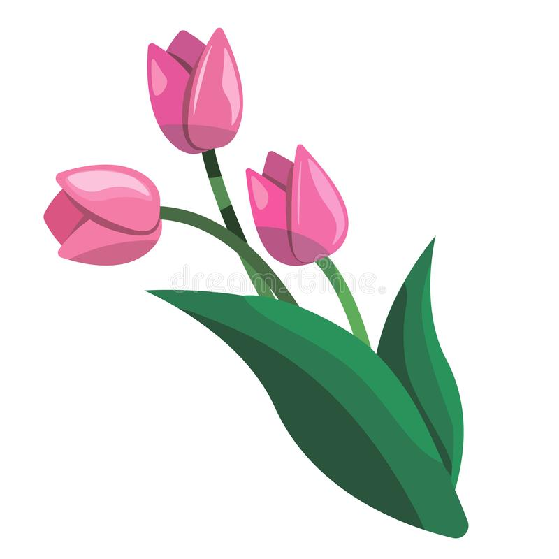 Bouquet of rose tulips clip art vector illustration stock illustration