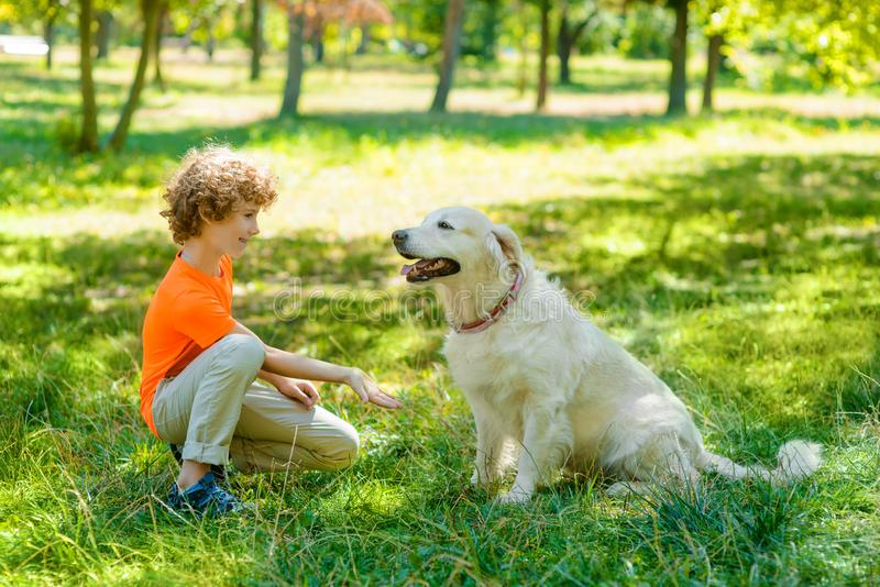 Cute boy asks for a shake. By a gesture from his amazing dog. Cute pet sits in front of a little child. Great time in the park royalty free stock photo