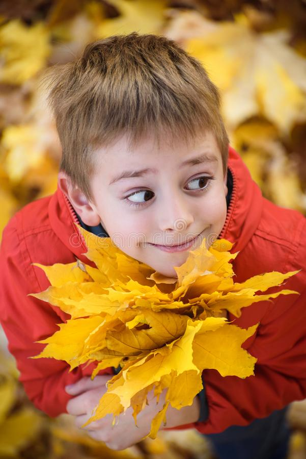 Cute boy with a bouquet of autumn leaves stands and looks up. Top view. Autumn concept stock images