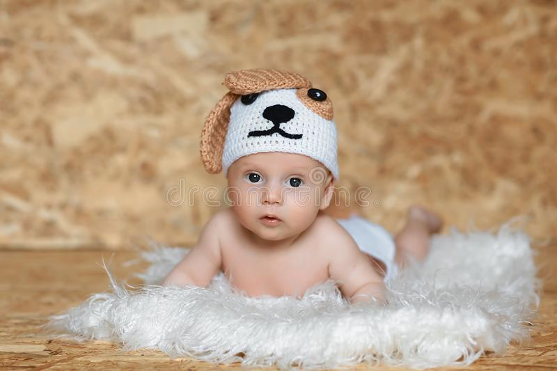 Cute boy in a cap dog. Portrait of a 2 month old baby royalty free stock photos
