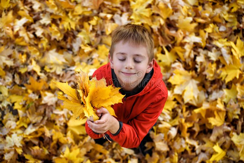 Cute boy with closed eyes and a bouquet of autumn leaves looks up. Top view. Autumn concept royalty free stock photos