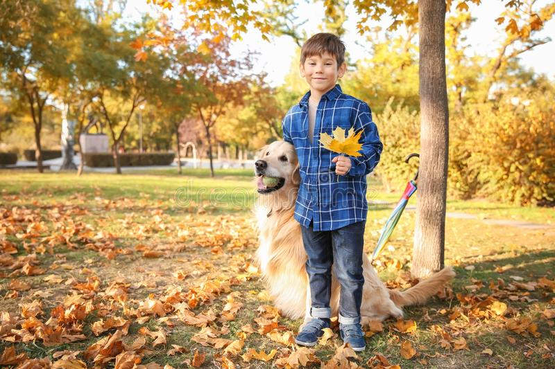 Cute boy with dog in autumn park stock photos