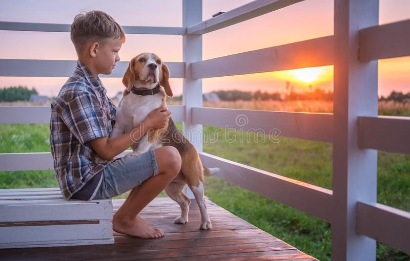 Cute boy and dog Beagle sitting hugging on the veranda royalty free stock image