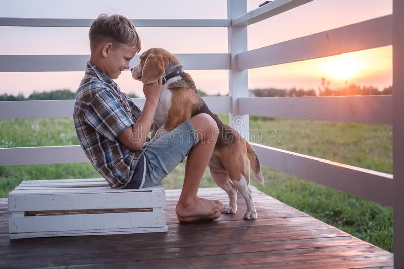 Cute boy and dog Beagle sitting hugging on the veranda stock photo