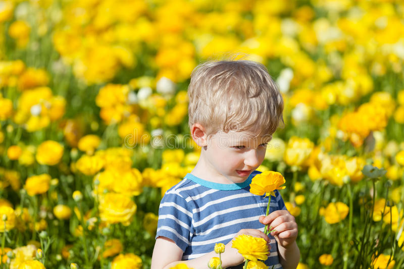 Download Cute Boy At The Flower Field Stock Image - Image: 30819751