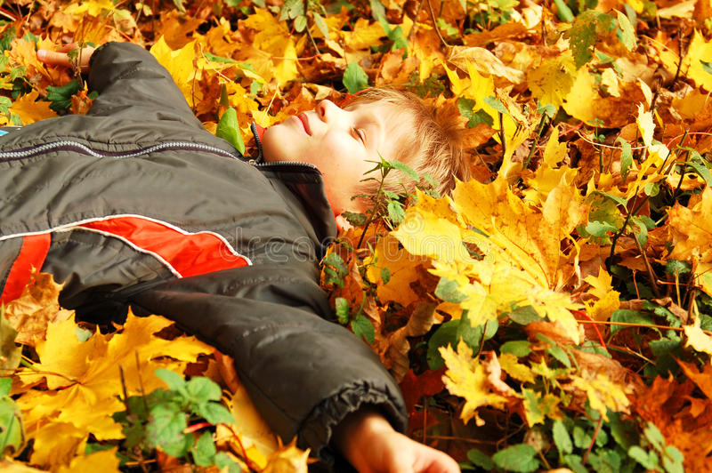Cute boy lying on yellow leaves, autumn concept stock photo