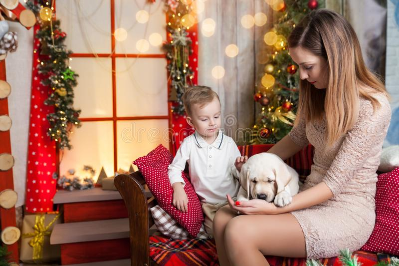 Cute boy with a mom holding a labrador puppy. Happy boy with a mom holding a labrador puppy in a studio with a warm christmas decor. Cosy gold and red decor stock photos