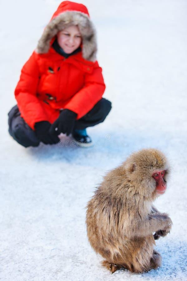 Cute boy at monkey park. Teenage boy at Snow monkey Japanese Macaque park looking at monkey on snow in Nagano, Japan stock image