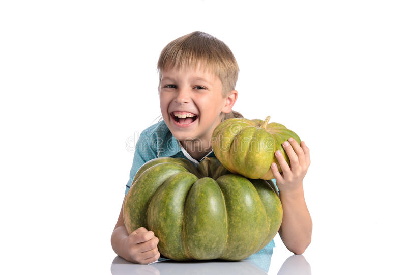 Cute boy sitting with different pumpkins. On halloween or thanksgiving harvest festival or patch on white background royalty free stock photo