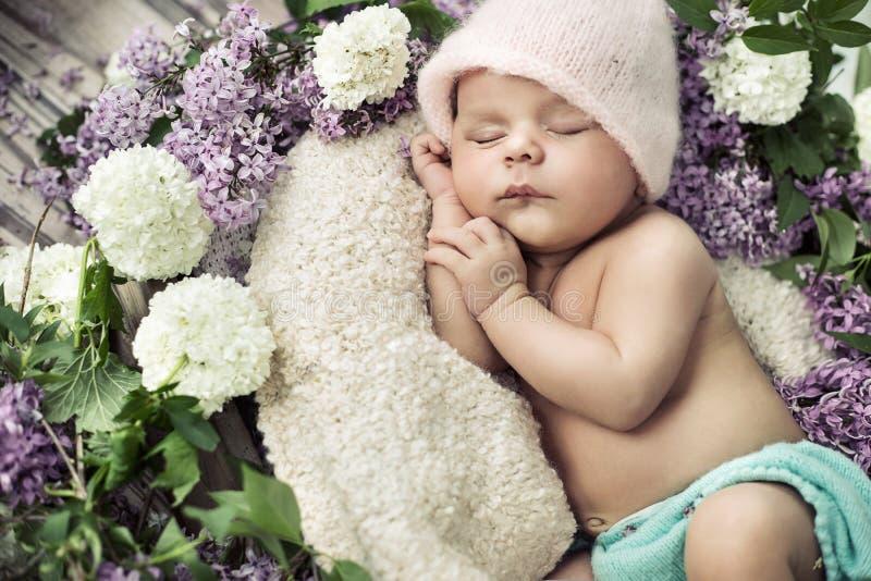 Cute boy sleeping among the flowers stock image