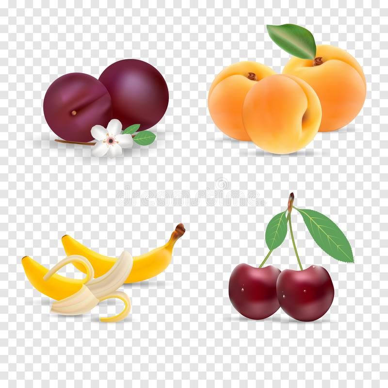 Cute bright colors of fruits vector collections. Set of fruits cherry, apricot, banana. Available in eps10. stock illustration