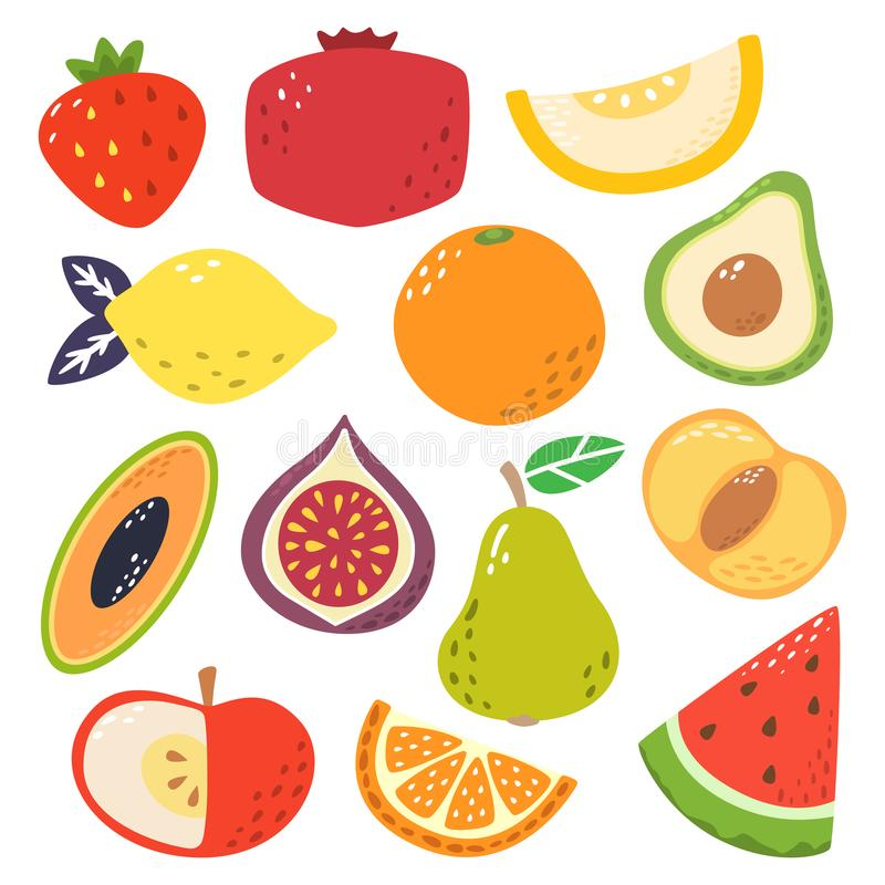 Cute bright colors of fruits vector collections. Set of fruits a strawberry, pomegranate, melon, lemon, orange, avocado royalty free illustration