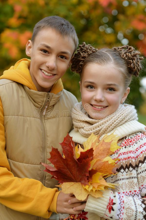 Cute brother and sister in autumn park royalty free stock photos