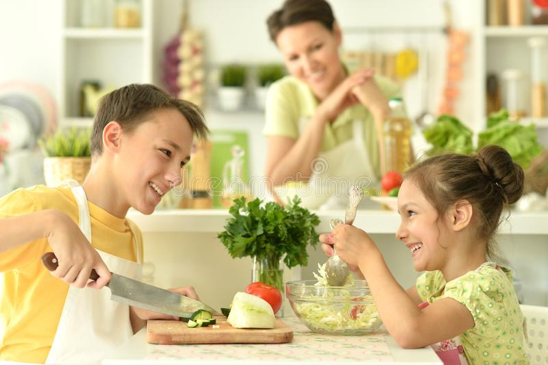 Portrait of brother and sister cooking together in kitchen royalty free stock image