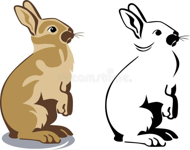 Download Cute brown bunny standing stock vector. Illustration of creature - 8334374
