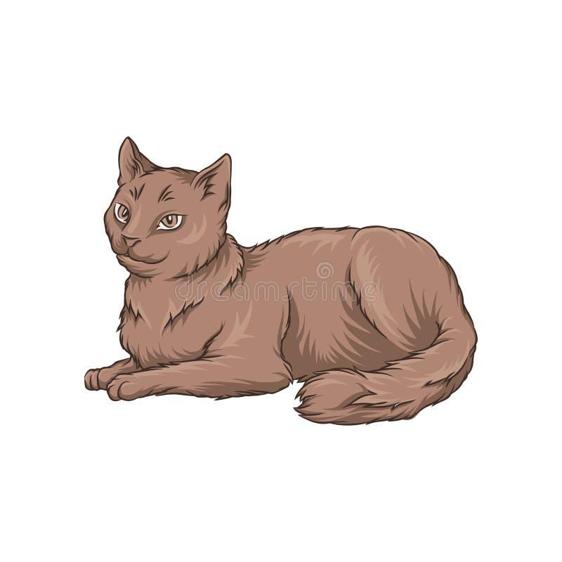 Cute brown cat pet animal lying on the floor hand drawn stock illustration