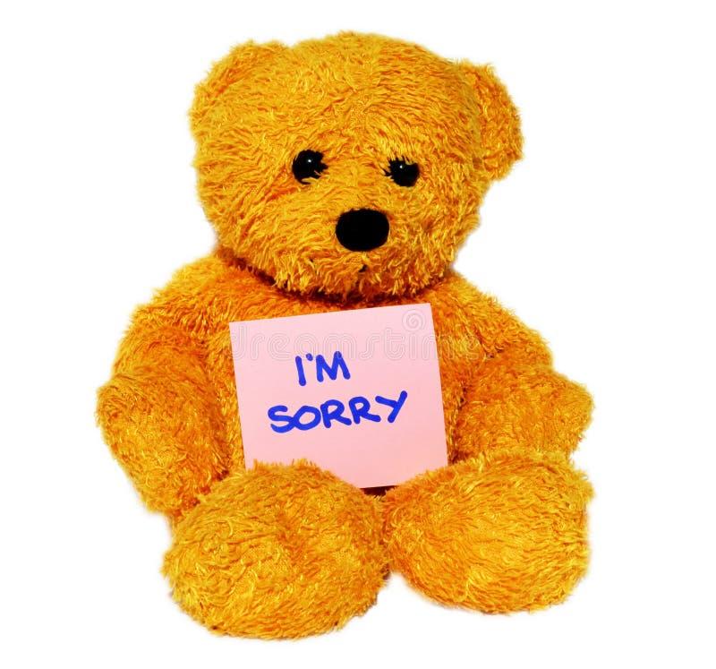 Im Sorry teddy bear stock images