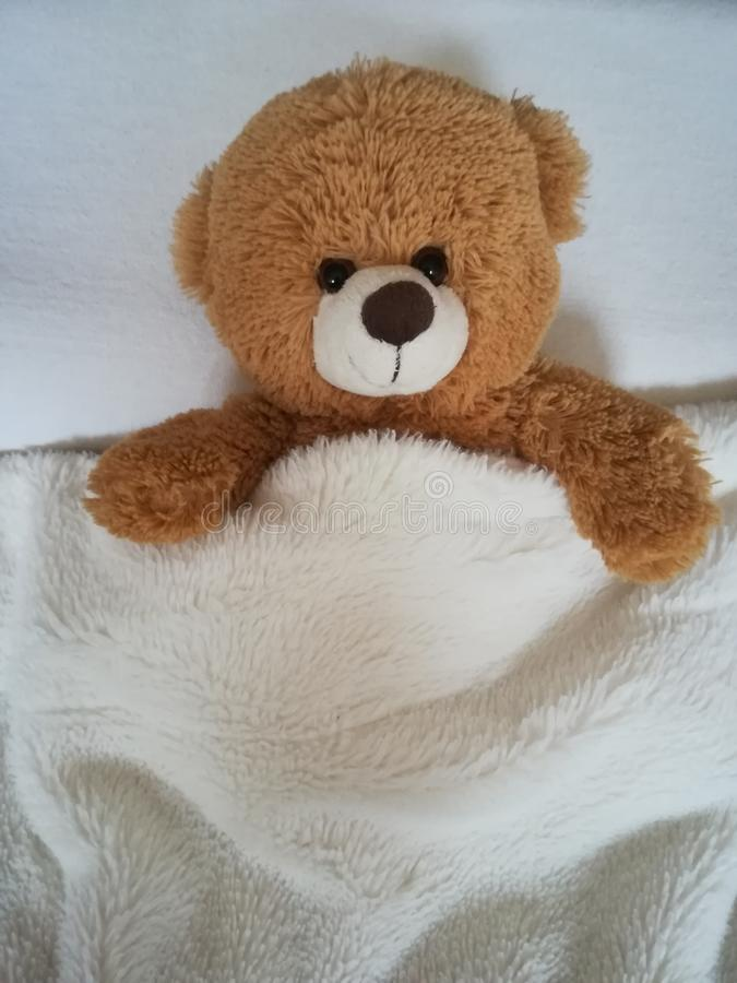 Teddy bear on bed. royalty free stock image