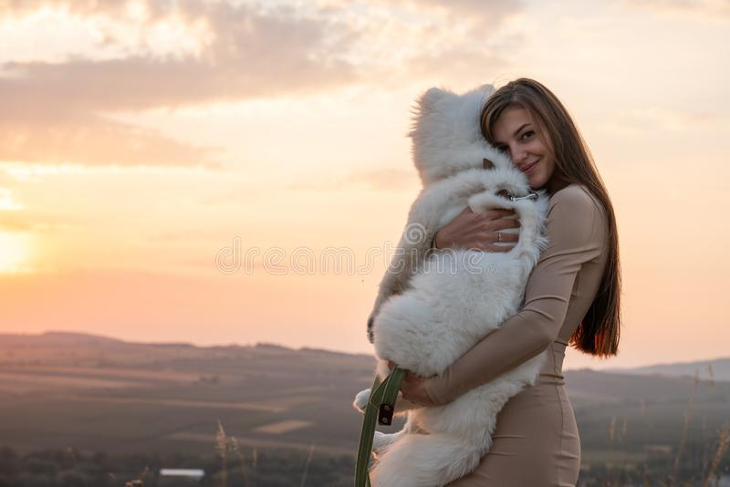 Cute brunette girl in beige dress hugs her samoed puppy, beautiful sunset on the background stock images