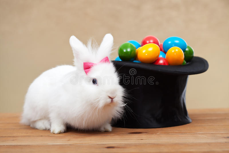 Cute bunny with easter eggs. Cute bunny guarding a magician hat full of easter eggs stock photos